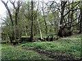 SE1544 : Sluice to former Mill Dam below Burley Woodhead by Michael Steele
