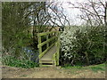 TR0031 : Yet Another Footbridge on the path to Johnson's Corner by Chris Heaton