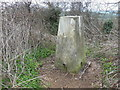ST7170 : Trig Point BM S2572, Hanging Hill by Ian S