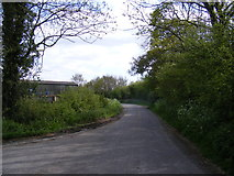 TM3886 : Becks Green Lane, Ilketshall St.Andrew by Adrian Cable