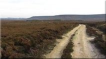 SE4996 : Sandy road by Richard Webb