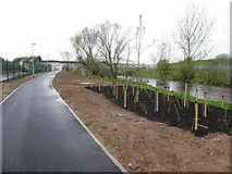 H4473 : New pathway, Omagh by Kenneth  Allen