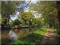 TQ0562 : River Wey Navigation by Derek Harper