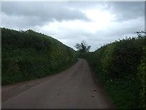 ST0215 : Lane heading east by JThomas