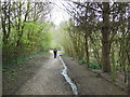 ST7366 : The Cotswold Way towards Weston Park by Ian S