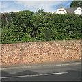 SX9473 : Sandstone-faced retaining wall, Dawlish Road, Teignmouth by Robin Stott