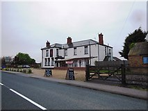 TF4382 : The Red Lion Pub, Withern by Bill Henderson