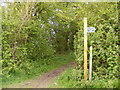 TM3688 : The Angles Way footpath to Rectory Lane & New Road by Adrian Cable