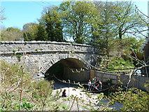 SK1971 : Bridge over the Monsal Trail by Tony Bacon
