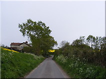 TM3687 : Manor Farm Lane by Adrian Cable