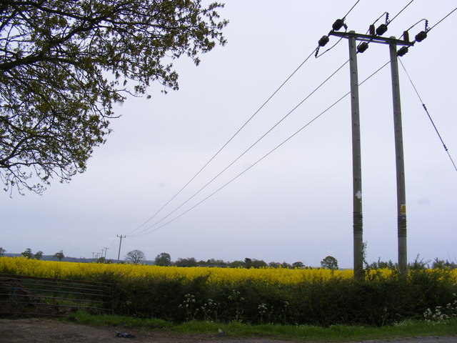 Electricity Poles & Wires