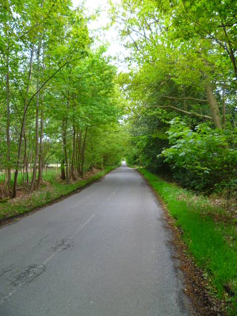 Looking south on Black Park Road