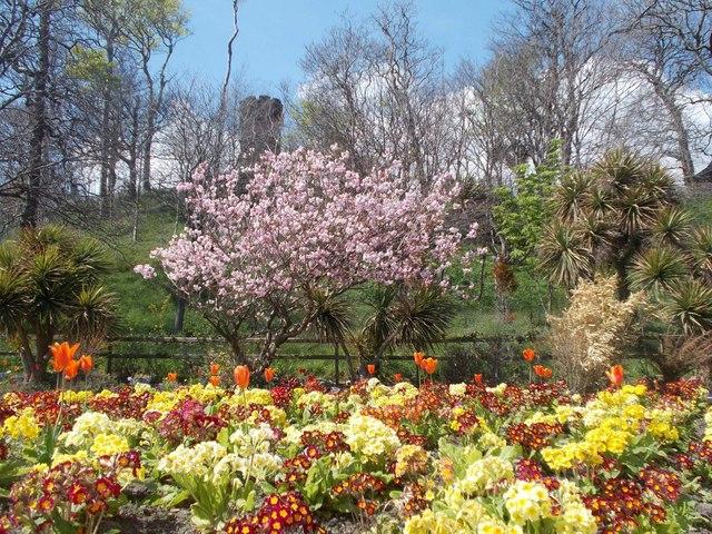 Villa Marina flowers