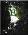 SX9272 : Looking up Pound Lane, Ringmore by Robin Stott