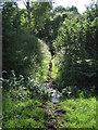 SX9271 : West on Waterworks Lane, Ringmore  by Robin Stott