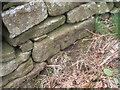 SE0051 : Benchmark on the wall beside Skipton Moor Lane by John Slater