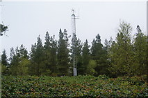 NU0702 : Communications mast by Canada Drive by Bill Boaden