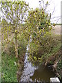 TM4186 : Stream off Redisham Road by Adrian Cable
