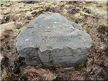 SE0020 : Mr Sunderland's stone by Humphrey Bolton