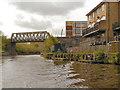 TQ7556 : Railway Bridge, River Medway by David Dixon
