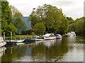 TQ7557 : Allington, River Medway by David Dixon