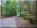 NS9097 : Driveway, Woodland Park by Richard Webb