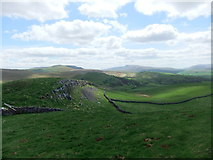 NY8008 : Little Longrigg Scar by David Brown