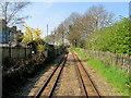 TR1534 : The Light Railway leaving Hythe by Chris Heaton