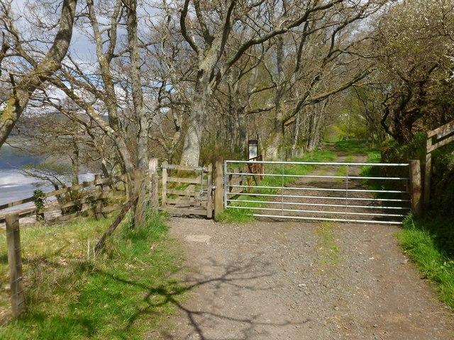 Shore Wood Entrance