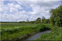 TQ9018 : Drainage ditch alongside Station Road by Ian Capper