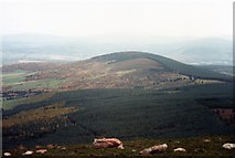 NJ5305 : A view NW from Craiglich summit by Stanley Howe