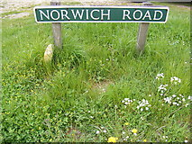 TG1422 : Norwich Road sign by Adrian Cable