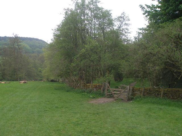 Heritage Way at Bank Wood
