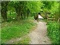 SU9086 : Beeches Way (6) by Shazz