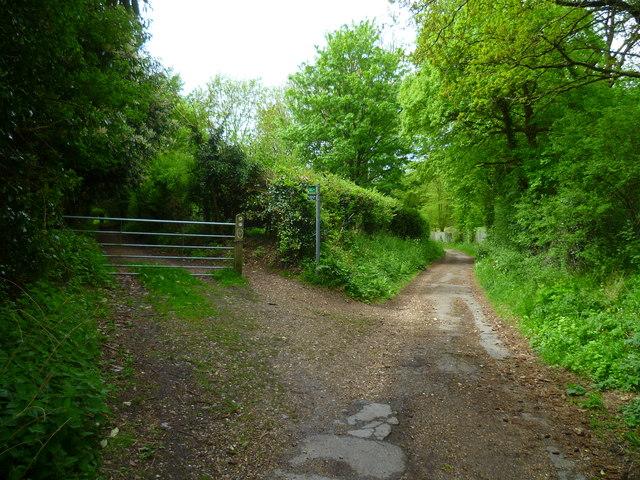 Beeches Way (12)