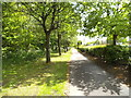 SO9394 : New Road Path by Gordon Griffiths