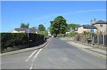 SE0824 : Love Lane - viewed from Well Head Lane by Betty Longbottom