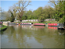 SP7288 : Grand Union Canal: Market Harborough Arm: Hill Crest winding hole by Nigel Cox