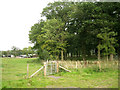 SP1166 : Corner of Cadborough Coppice by Robin Stott
