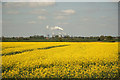 SK9280 : Oilseed rape near Thorpe-le-Fallows by Richard Croft