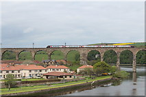 NT9953 : Train on Royal Border Bridge by Billy McCrorie