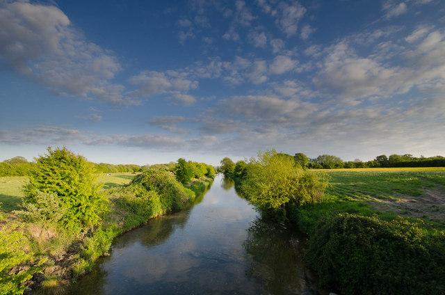 Clevedon Moor