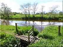 H5070 : Fisherman's small footbridge, Lisboy by Kenneth  Allen
