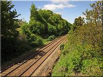 SX9065 : Railway line, Torre by Derek Harper
