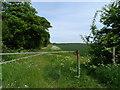 TL2448 : Bridleway 14, near Potton by Bikeboy