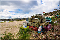 ND4798 : Steep Sloping Beach at Weddell Sound by Andy Farrington