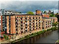SE3032 : Roberts Wharf, River Aire by David Dixon