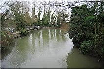 TL3808 : Dobb's Weir by N Chadwick