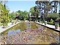 TQ3226 : Italian Garden & pond, Borde Hill by Paul Gillett