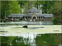 NS2209 : Across the Swan Pond - Culzean Castle by Anthony Parkes